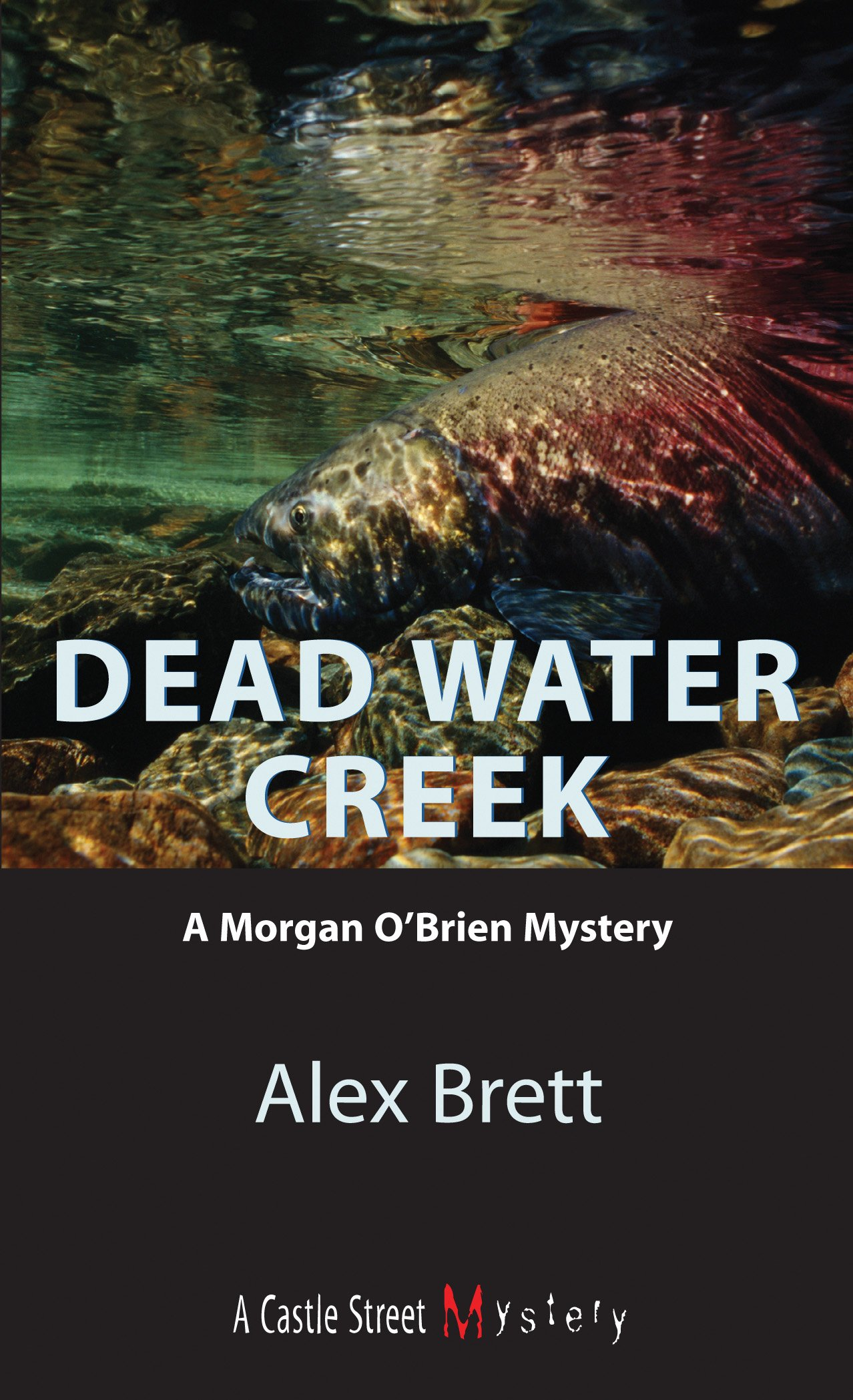DEAD WATER CREEK COVER HIGH RES